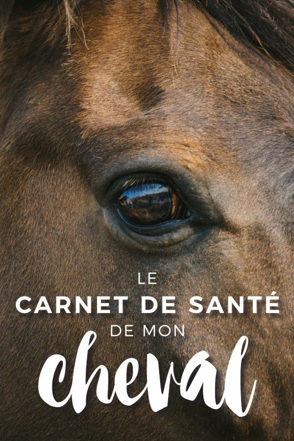 Carnet de santé cheval